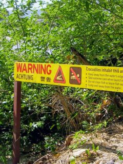 Port Douglas Inlet Crocodile Warning Sign Near The Sugar Wharf