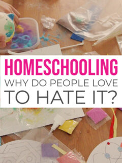 Homeschooling Why do people love to hate it against don't home school