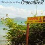 Port Douglas Crocodiles