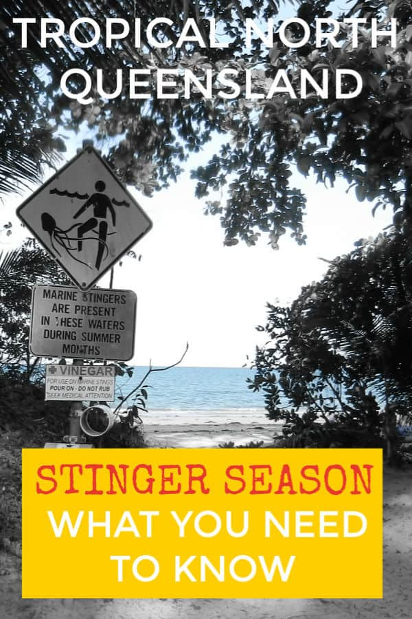 Queensland Stinger Season Port Douglas Cairns Australia