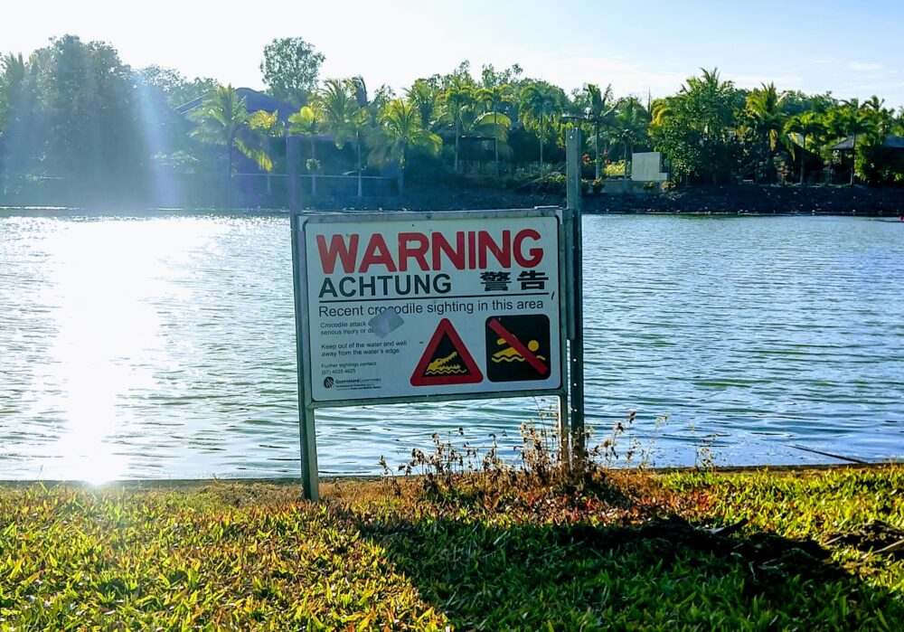 recent crocodile sighting warning sign in port douglas