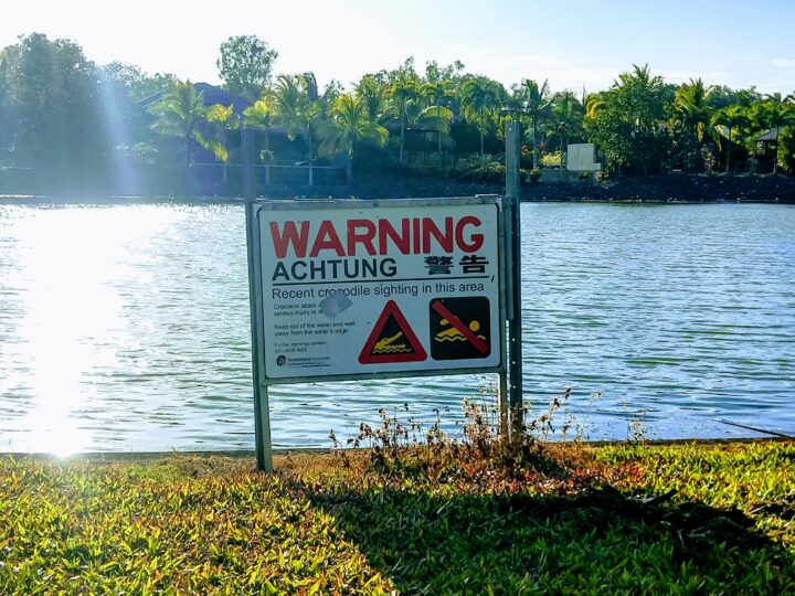 recent crocodile sighting warning sign in port douglas