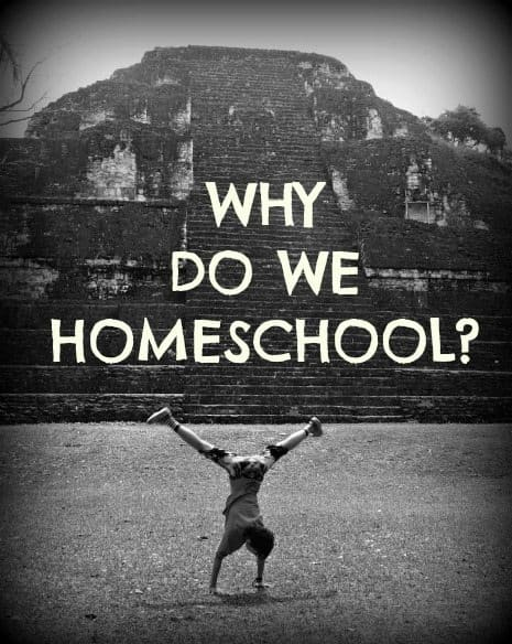 Why do we homeschool