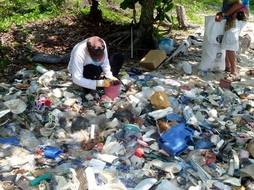 Beach cleaning volunteer Marine debris, Cape Tribulation Australia