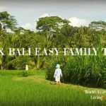 Things to do in Ubud Bali. Easy Family Travel