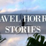 Travel Horror Stories Spider