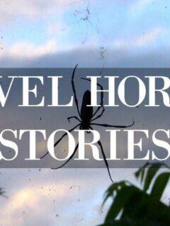 Travel Horror Stories Spider