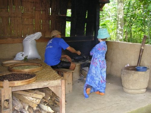 Coffee Kopi Luwak Bali roasting civet coffee Bali