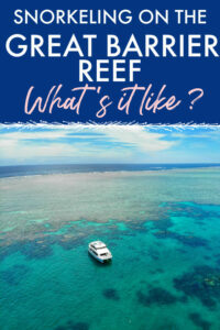 Snorkeling on the great barrier reef what's it like