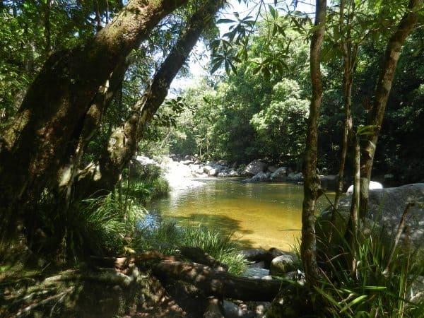 Mossman Gorge Port Douglas