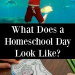 What is Homeschooling Like