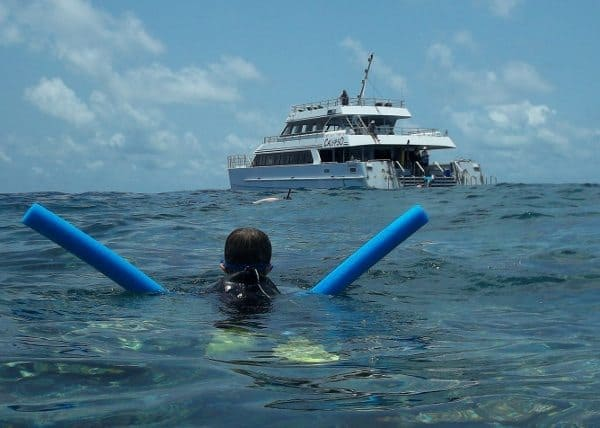 things to do port douglas snorkel Great Barrier Reef