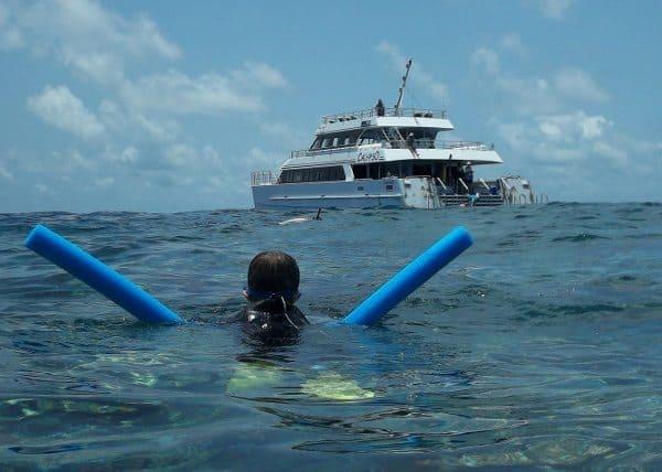 things to do port douglas snorkel reef