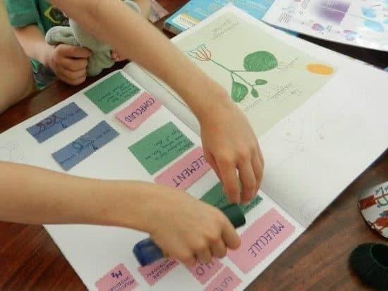 science scrap book for homeschoolers