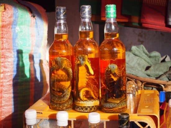 Luang Prabang Night Market, cobra wine