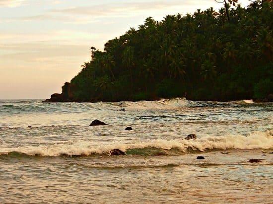 Surfing Mirissa Sri Lanka