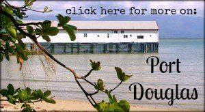 Port Douglas family travel blog