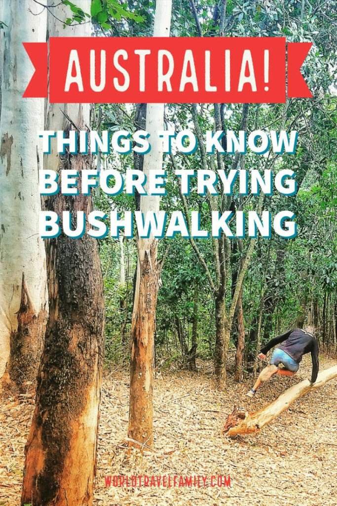 things to know before trying bushwalking in australia (1)