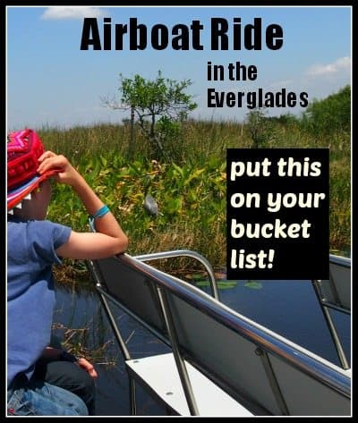 airboat ride in the everglades Florida everglades