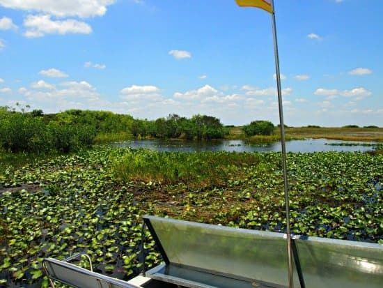 Florida everglades airboat rides