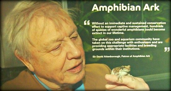 David Attenborough Visit London Zoo