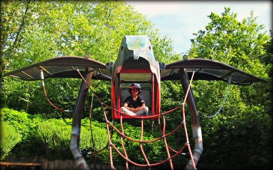 Playgrounds for Kids at London Zoo