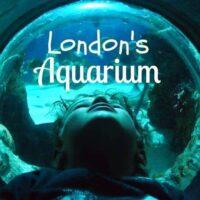 London Aquarium Review & Blog