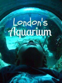 London aquarium review