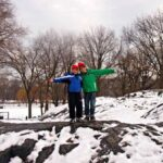 Central Park snow winter
