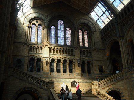 """自然历史博物馆内部"""" class ="""" wp-image-18497"""" srcset ="""" https://worldtravelfamily.com/wp-content/uploads/2014/11/Natural-history-museum-interior-450.jpg 450w,https: //worldtravelfamily.com/wp-content/uploads/2014/11/Natural-history-museum-interior-450-300x224.jpg 300w"""" size =""""(最大宽度:450px)100vw,450px"""