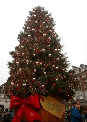Christmas tree London