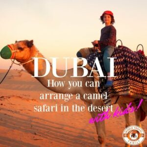 Dubai Camel Safari with dinner, camp and optional 4x4 and dune surfing