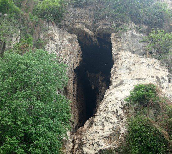 The bat cave battambang cambodia