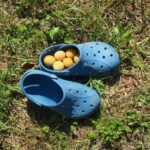 Plums in Crocs.Winning the lifestyle lottery world travel family travel blog