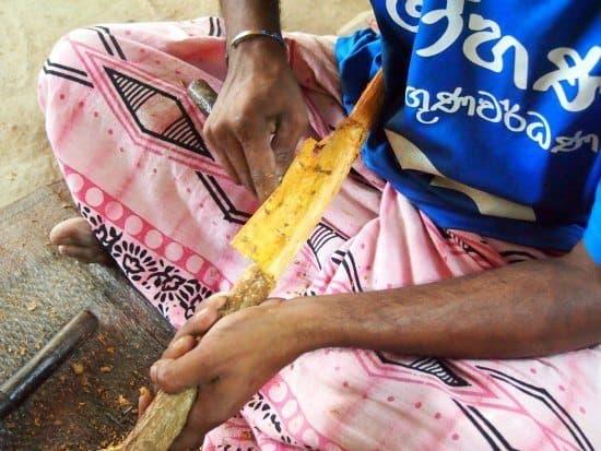 Cinamon production on the Madu Ganga cruise