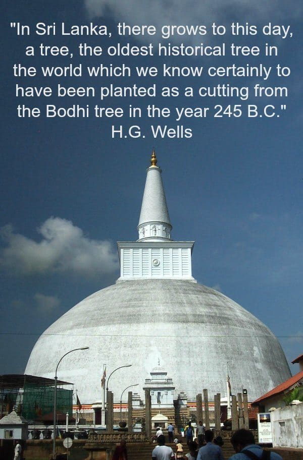 Visiting Anuradhapura and the Ancient Bo Tree, Quote by HG Wells.