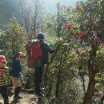 Altitude, Attitude and Ailments. Nepal with Kids