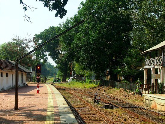 Waiting for Train to Jaffna from Anuradhapura station, watching monkeys and tuk tuks cross the tracks.