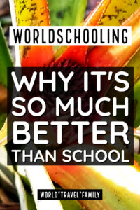 Why is worldschooling better than school