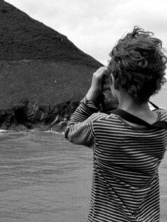Seeing seals Wales. Cwmtydu beach