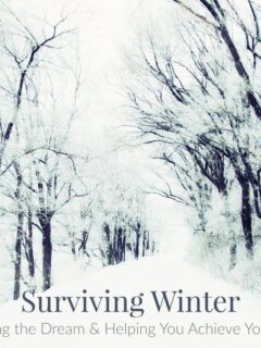 Winter Living the dream