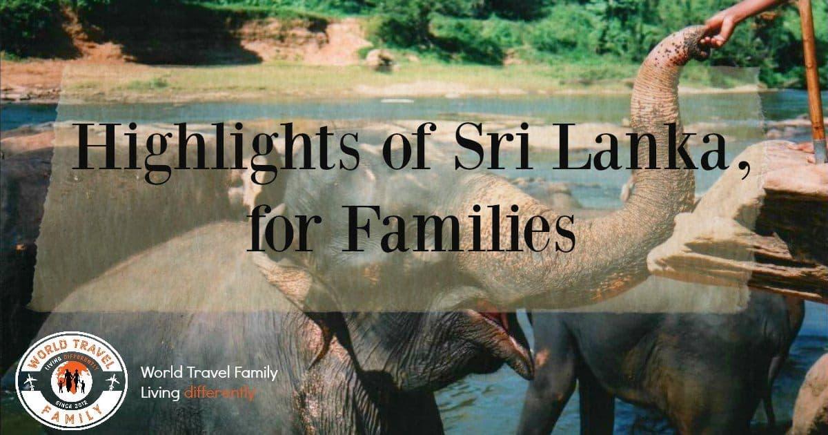 Highlights of Sri Lanka for Families elephants