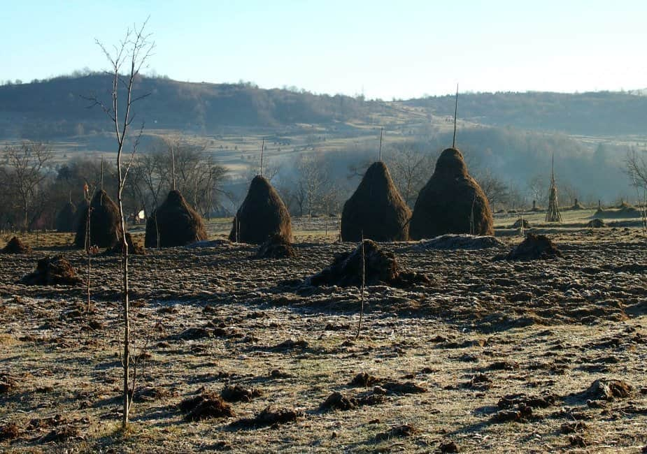 Autumn frosts on fields and haystacks Breb Maramures Romania