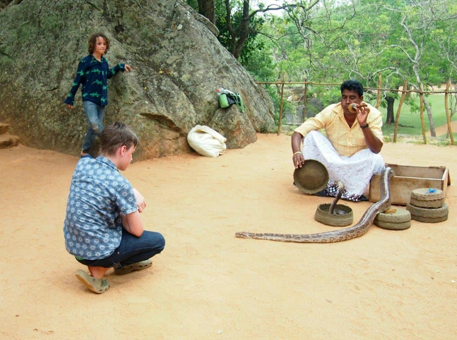 sigiriya with kids sri lanka snake