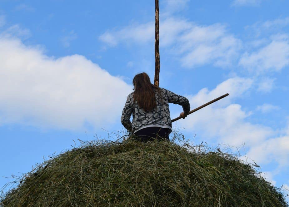 lady on top of a haystack maramures romania