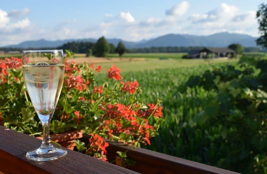 Airbnb Slovenia Dairy Farm