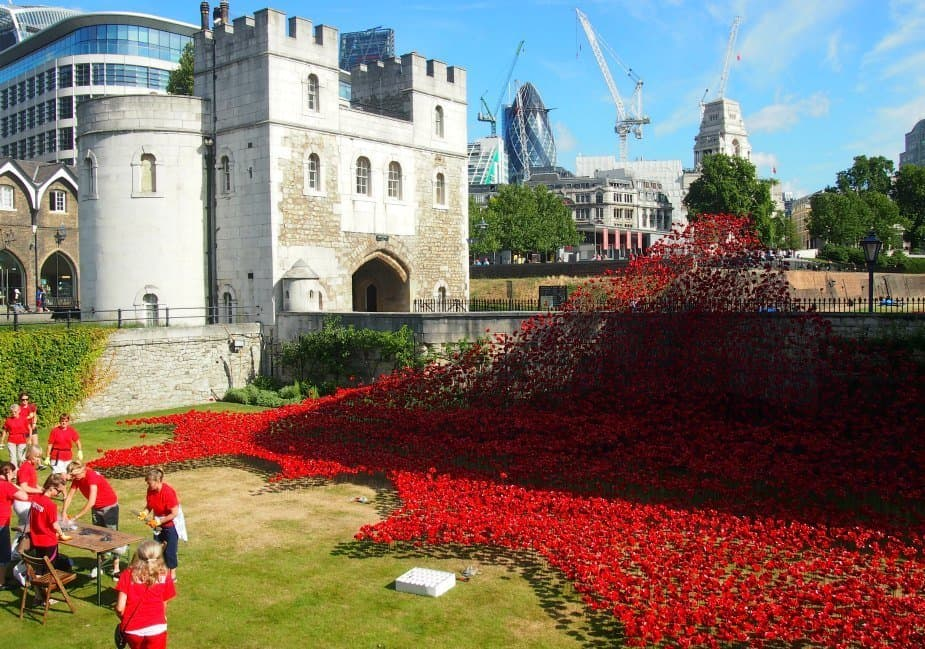 World War 1 poppies Tower of London centenary 2014
