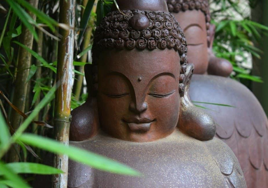 almanity hoi an hotel reviews gardens