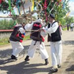 Whipping-the-yolked-men-oxen-in-Hoteni-near-Breb