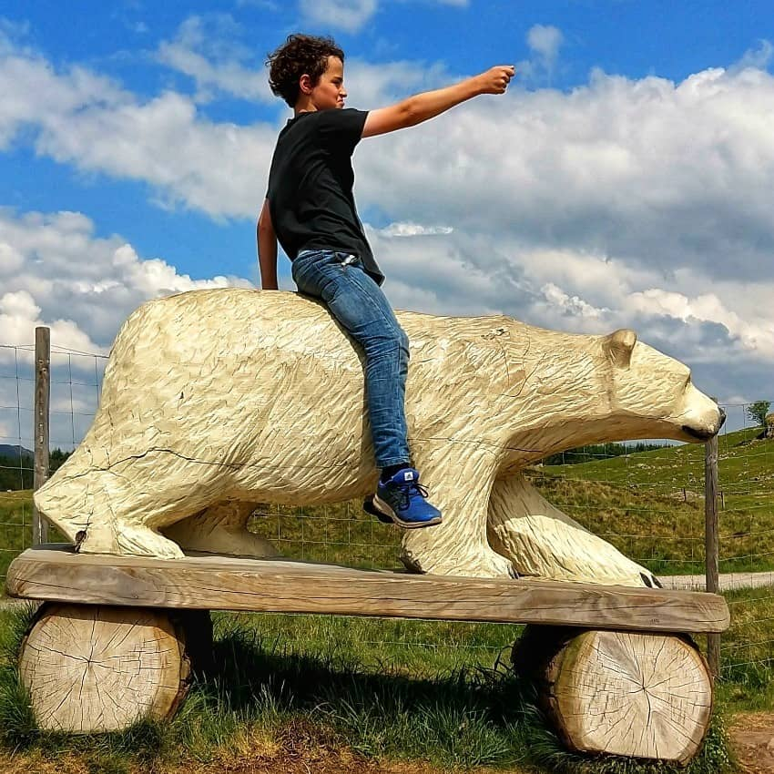 Highland Wildlife Park With Kids Scotland Costs